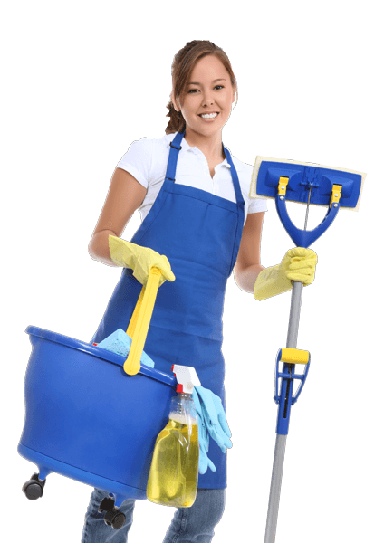 ILLINOIS GREEN HOME CLEANING
